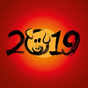 Mailing 02-2019 Logo Chinese Newyear